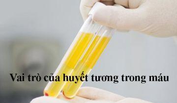 vai trò của huyết tương trong máu